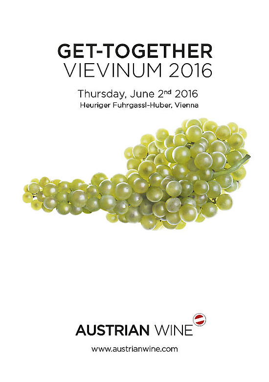 Get Together - VIEVIMUM 2016